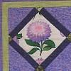 violetvision