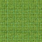 mmCX9316_Asparagus